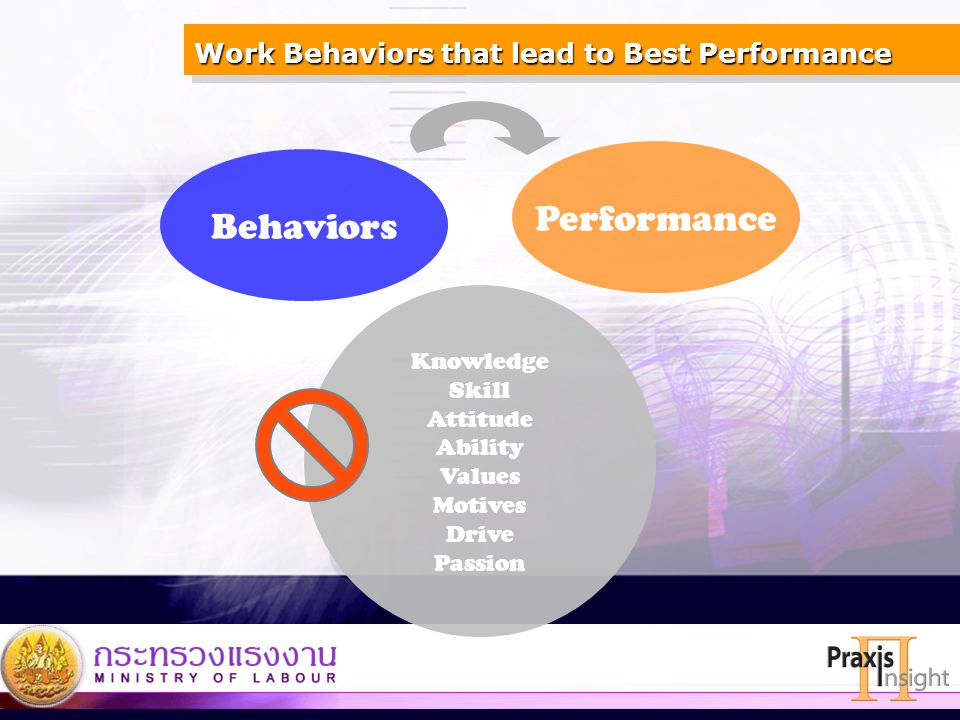 Work Behaviors that lead to Best Performance