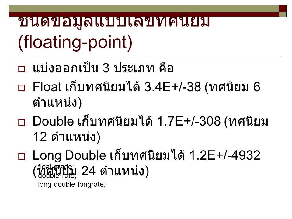 ชนิดข้อมูลแบบเลขทศนิยม (floating-point)