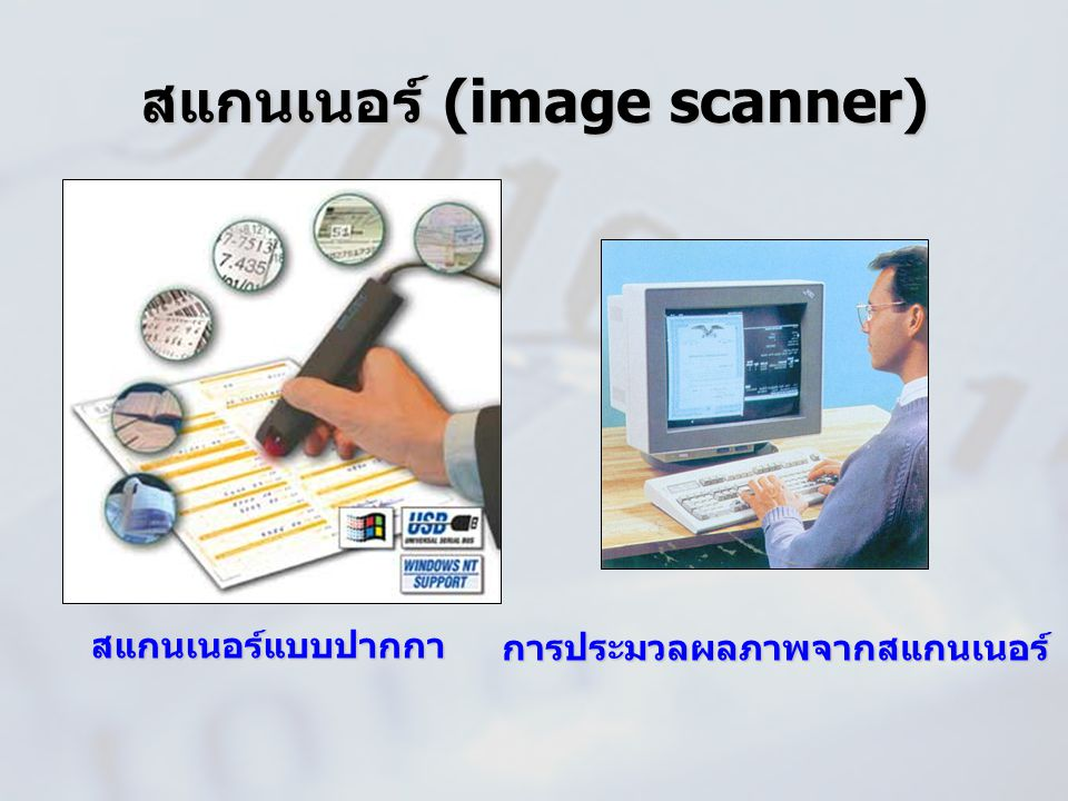 สแกนเนอร์ (image scanner)