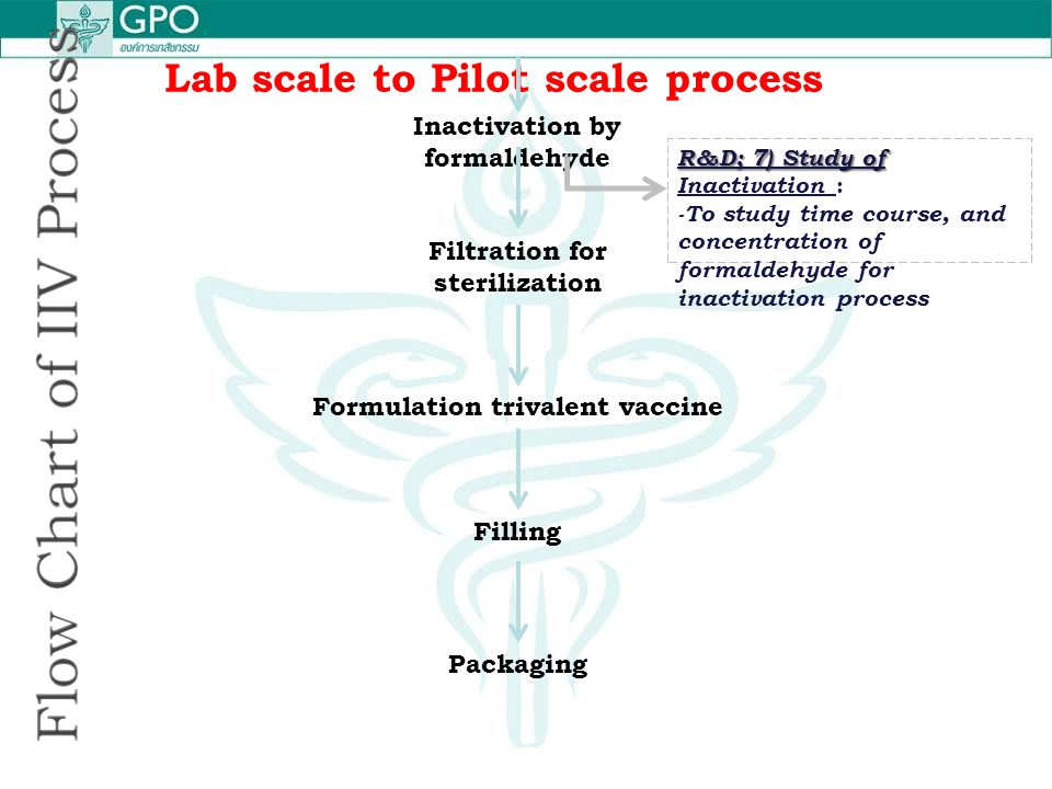 Lab scale to Pilot scale process