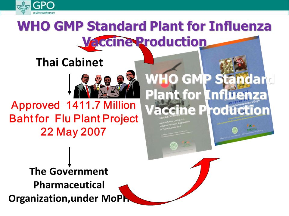WHO GMP Standard Plant for Influenza Vaccine Production