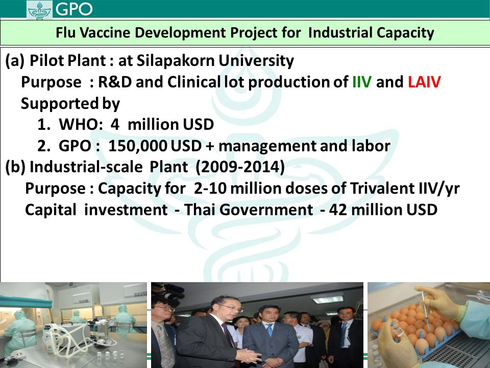 Flu Vaccine Development Project for Industrial Capacity