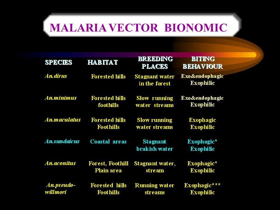 MALARIA VECTOR BIONOMIC