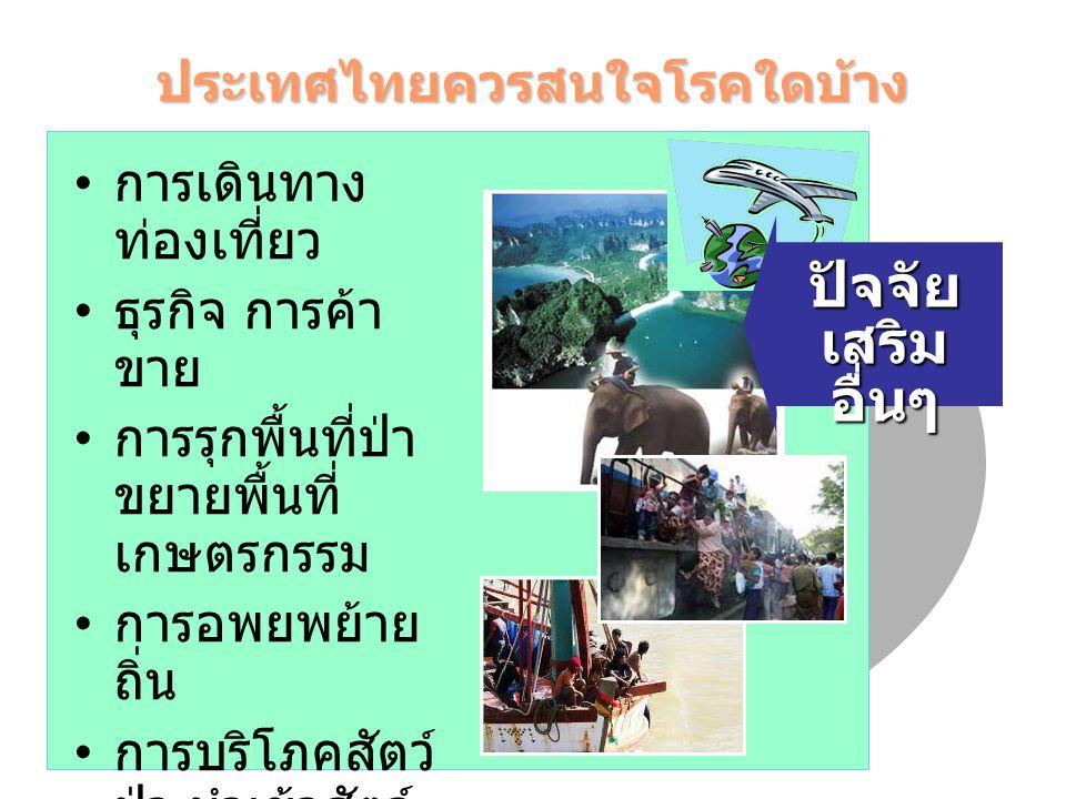 ประเทศไทยควรสนใจโรคใดบ้าง