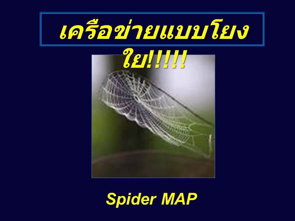 เครือข่ายแบบโยงใย!!!!! Spider MAP