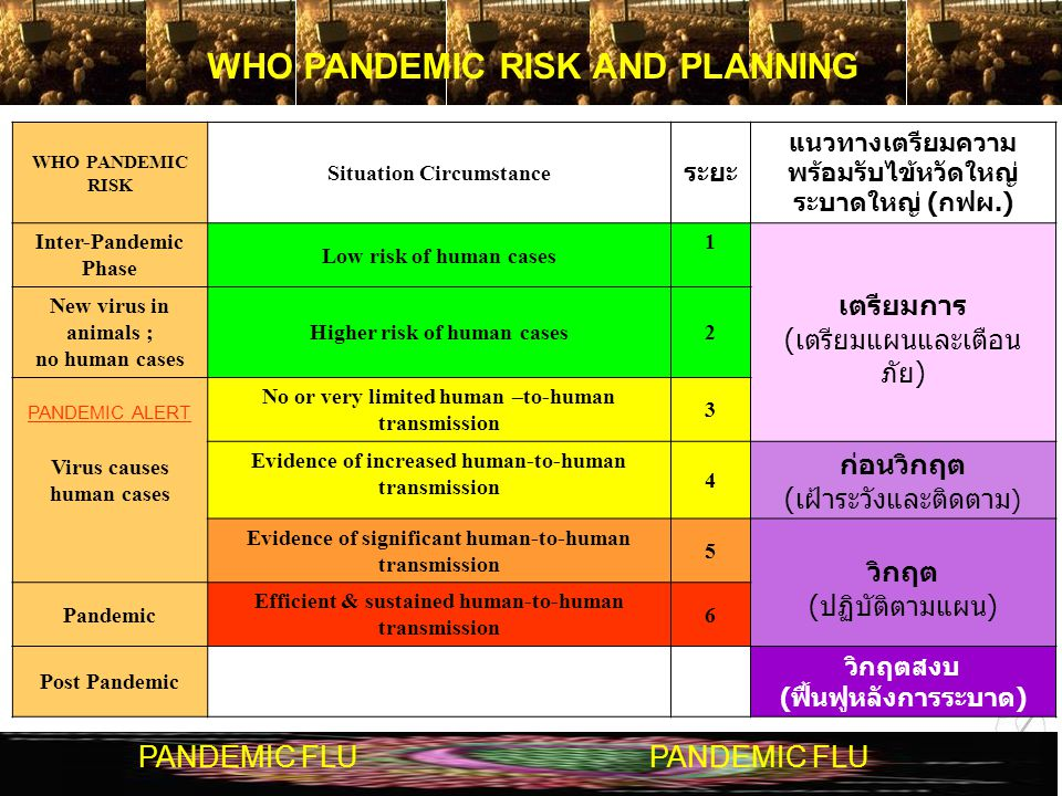 WHO PANDEMIC RISK AND PLANNING
