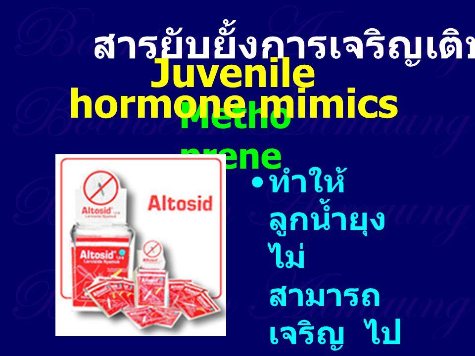 Juvenile hormone mimics
