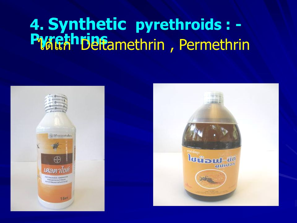 4. Synthetic pyrethroids : - Pyrethrins