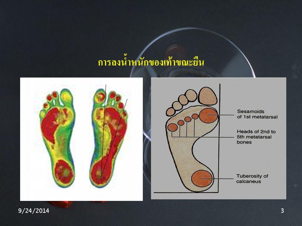 การลงน้ำหนักของเท้าขณะยืน