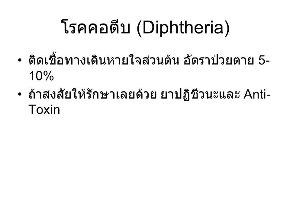 โรคคอตีบ (Diphtheria)