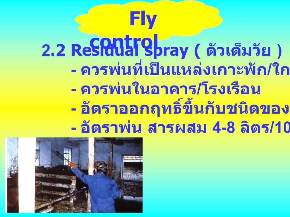Fly control 2.2 Residual spray ( ตัวเต็มวัย )