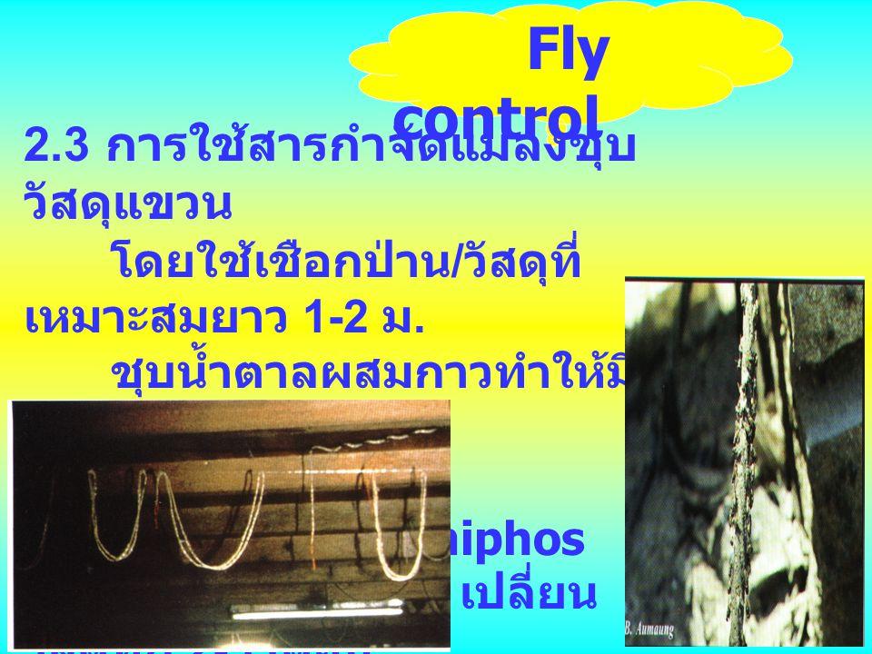 Fly control 2.3 การใช้สารกำจัดแมลงชุบวัสดุแขวน