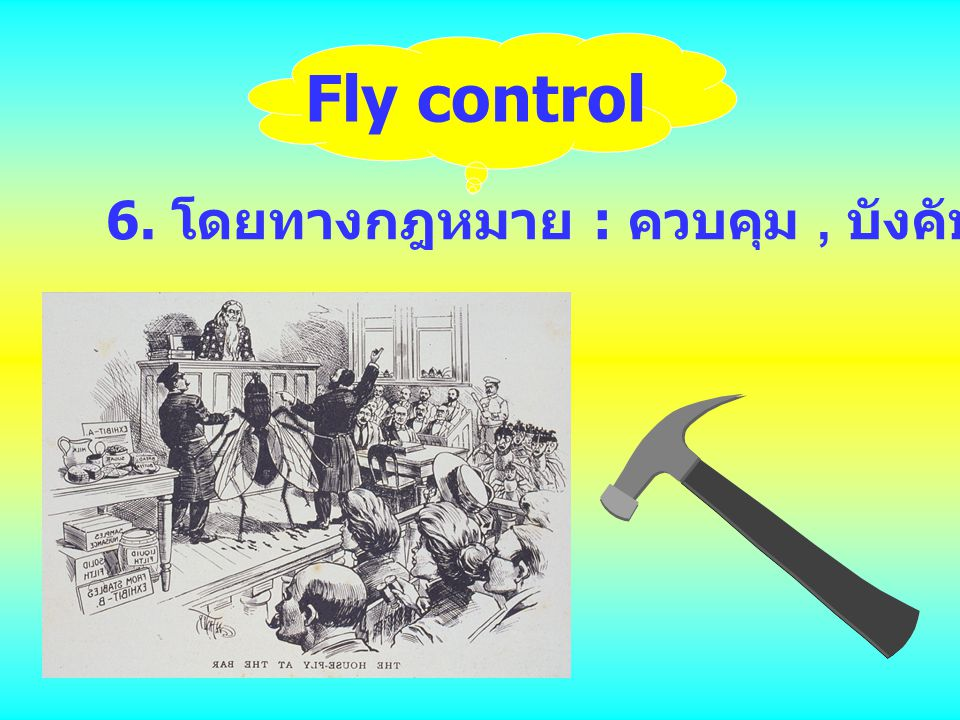 Fly control 6. โดยทางกฎหมาย : ควบคุม , บังคับ