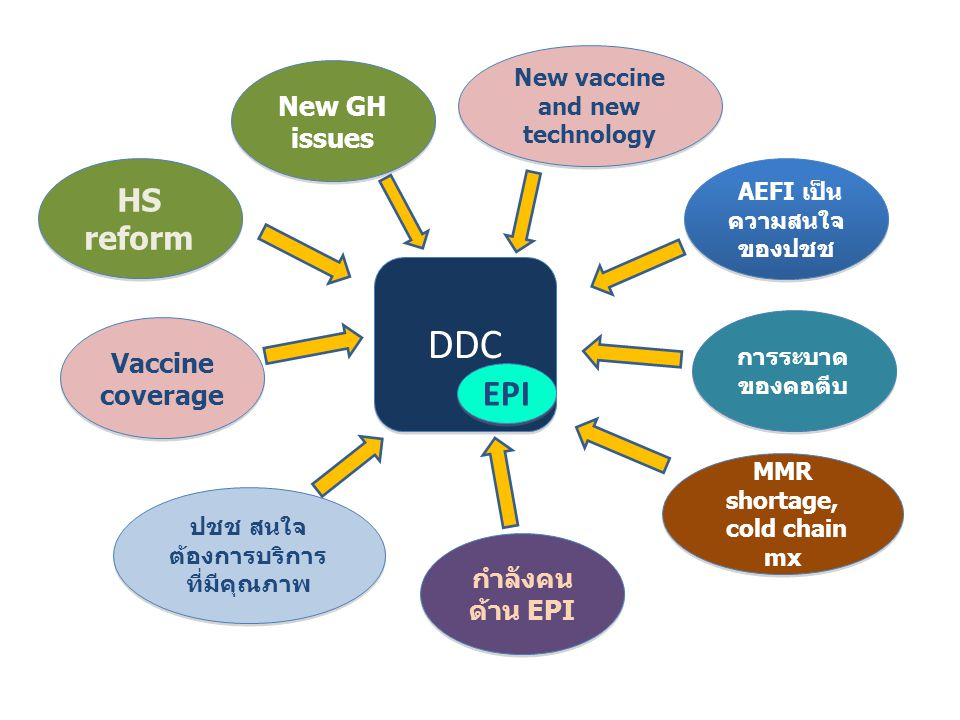 DDC EPI HS reform New GH issues Vaccine coverage กำลังคนด้าน EPI