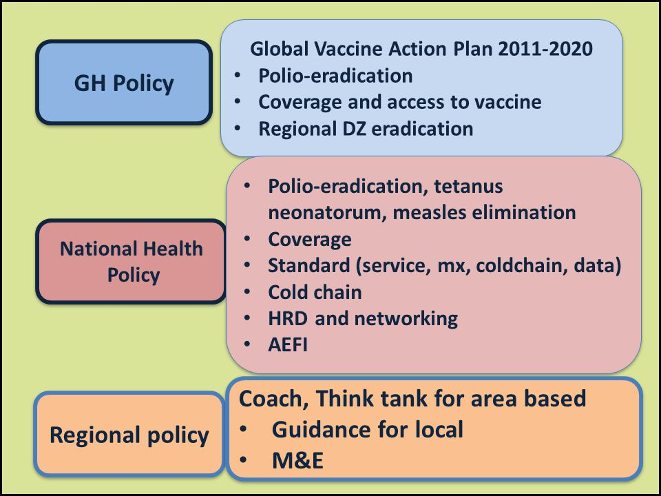 Global Vaccine Action Plan 2011-2020