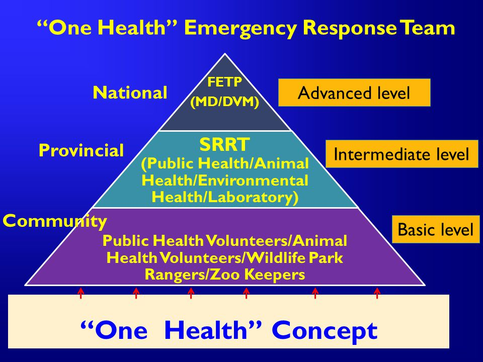 One Health Emergency Response Team