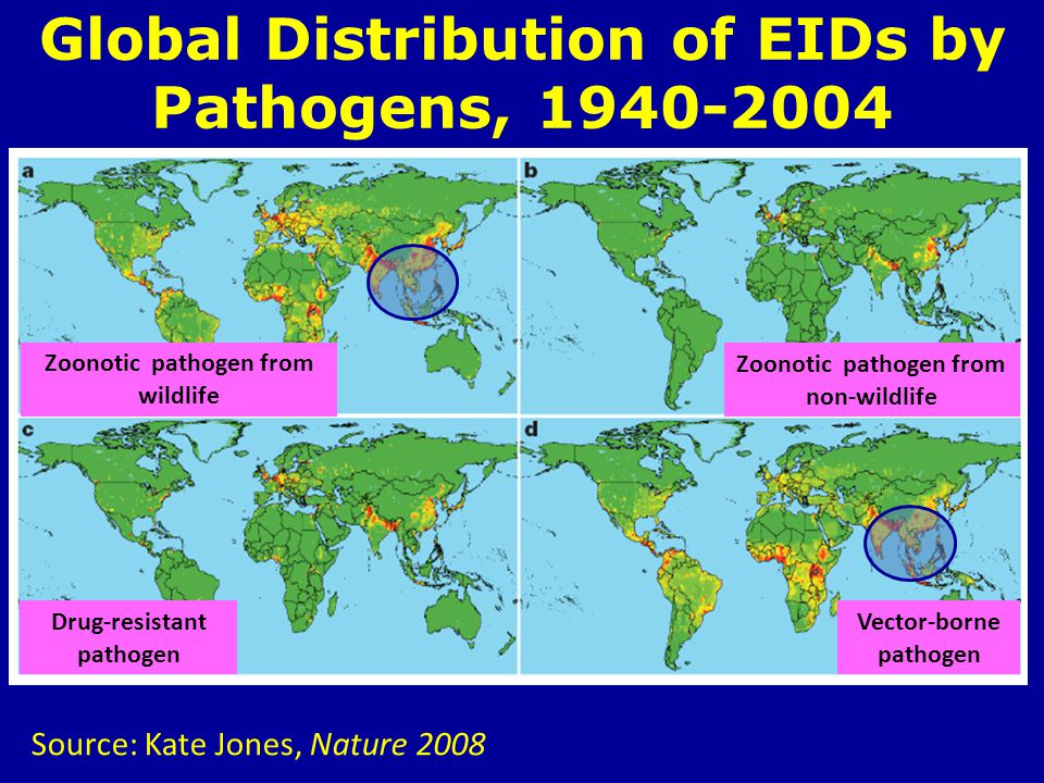 Global Distribution of EIDs by Pathogens, 1940-2004