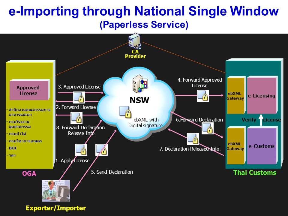 e-Importing through National Single Window (Paperless Service)