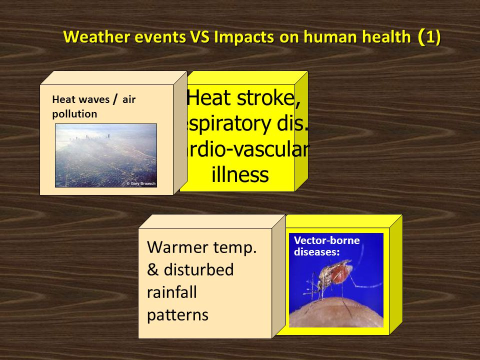 Weather events VS Impacts on human health (1)