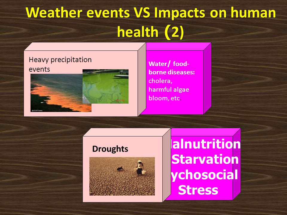 Weather events VS Impacts on human health (2)
