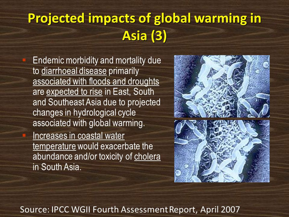 Projected impacts of global warming in Asia (3)