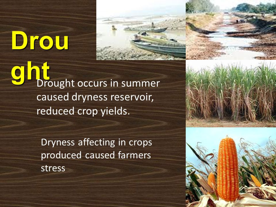 Drought Drought occurs in summer caused dryness reservoir, reduced crop yields. ความแห้งแล้ง.