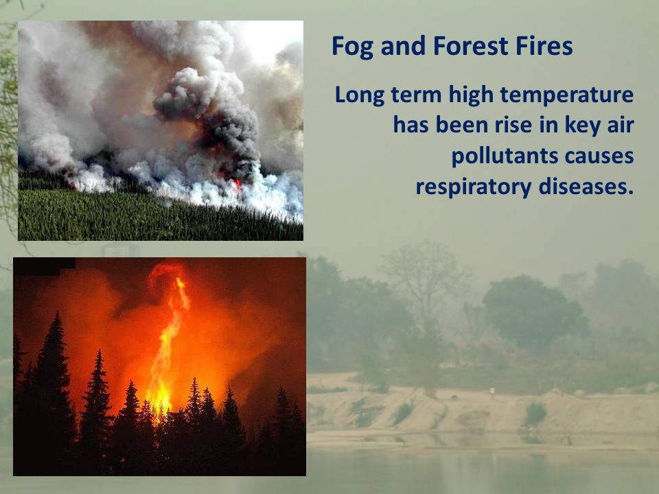 Fog and Forest Fires Long term high temperature has been rise in key air pollutants causes respiratory diseases.