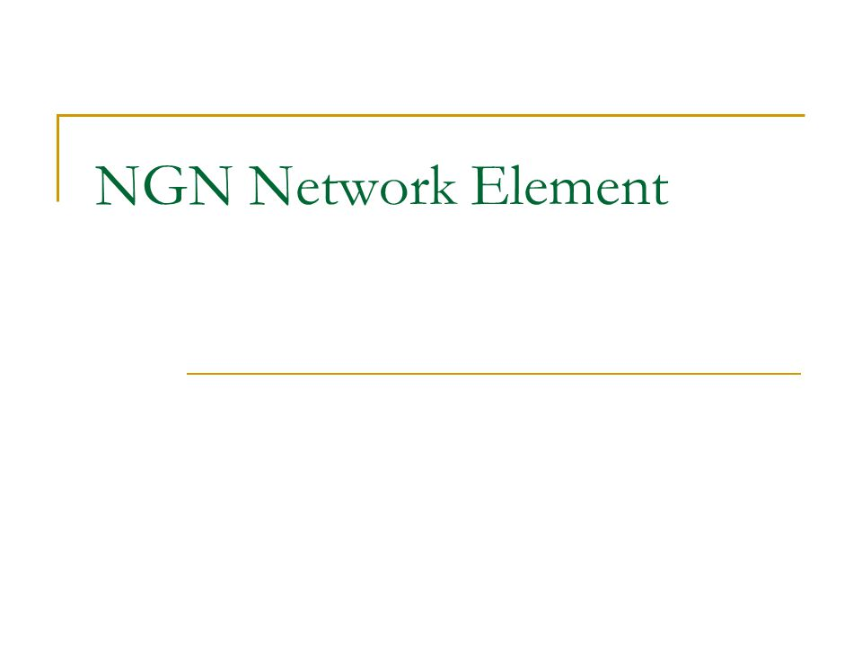 NGN Network Element