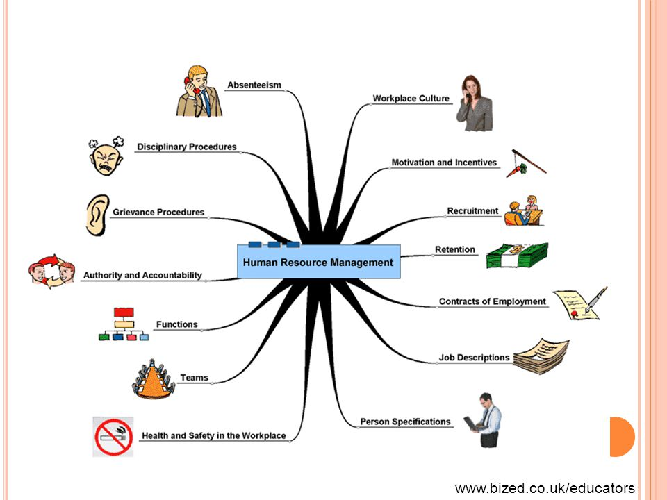 www.bized.co.uk/educators