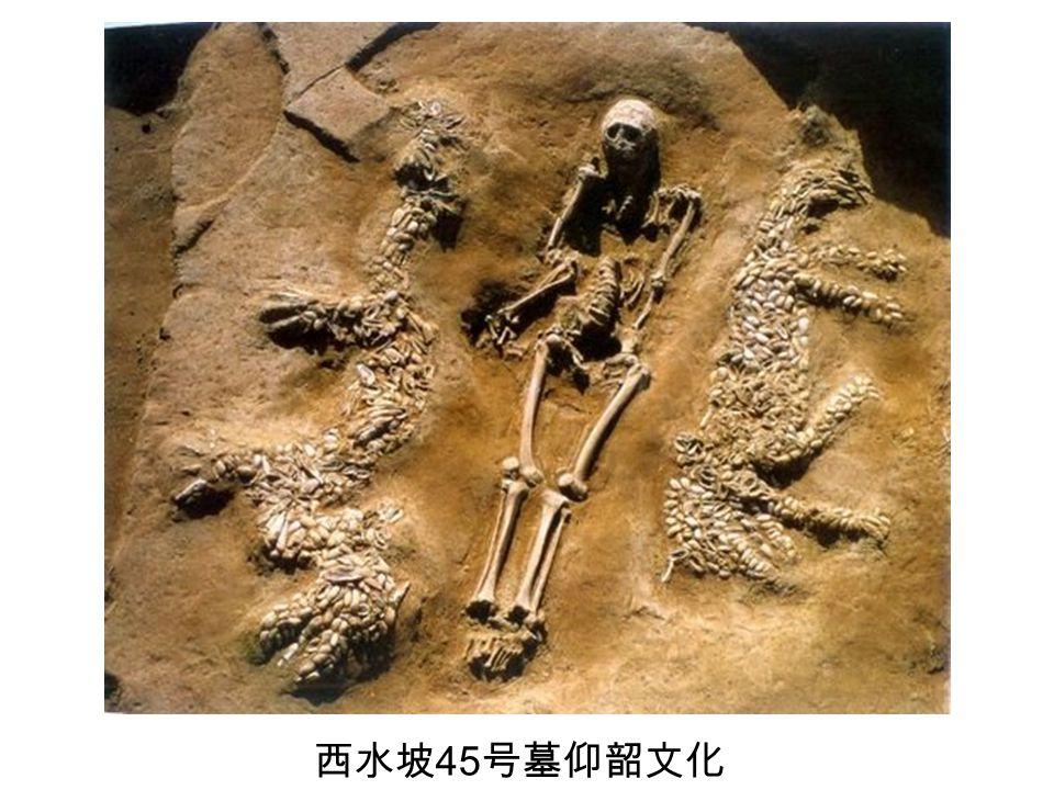 西水坡45号墓仰韶文化