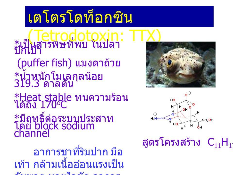 เตโตรโดท็อกซิน (Tetrodotoxin: TTX)