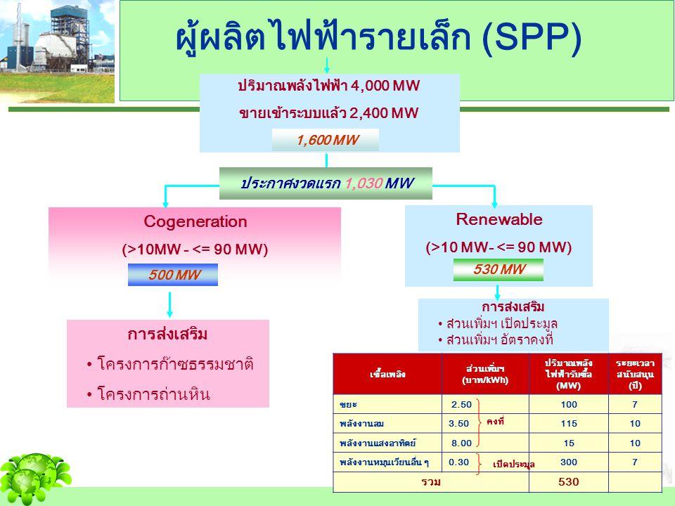 ผู้ผลิตไฟฟ้ารายเล็ก (SPP)