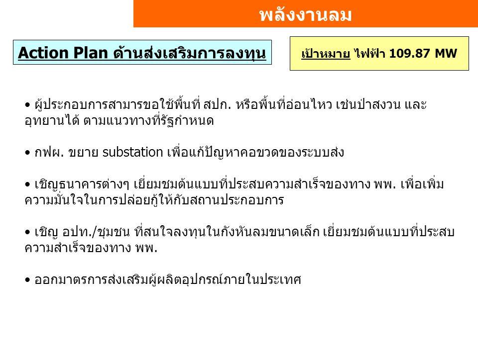 พลังงานลม Action Plan ด้านส่งเสริมการลงทุน