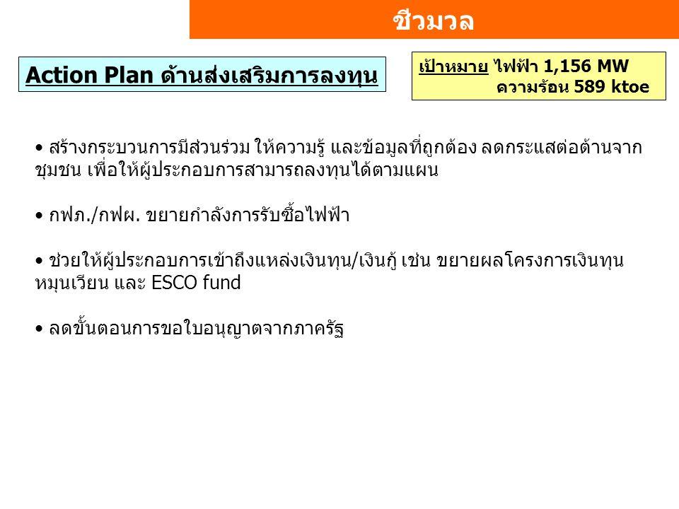 ชีวมวล Action Plan ด้านส่งเสริมการลงทุน