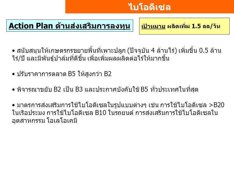 ไบโอดีเซล Action Plan ด้านส่งเสริมการลงทุน