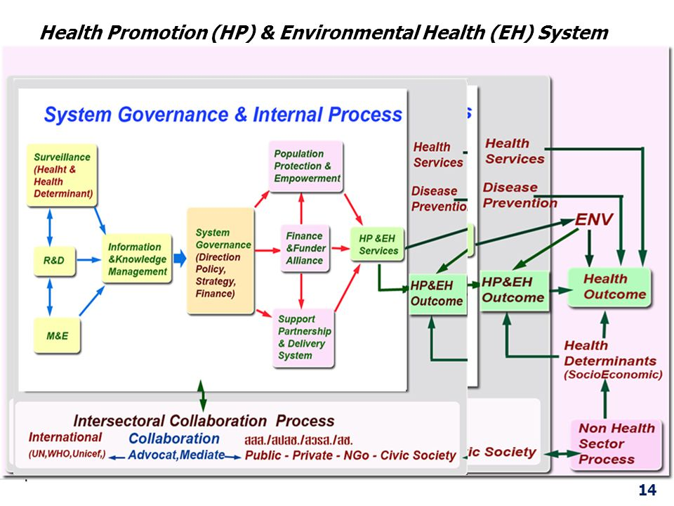 Health Promotion (HP) & Environmental Health (EH) System