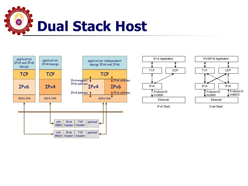 Dual Stack Host