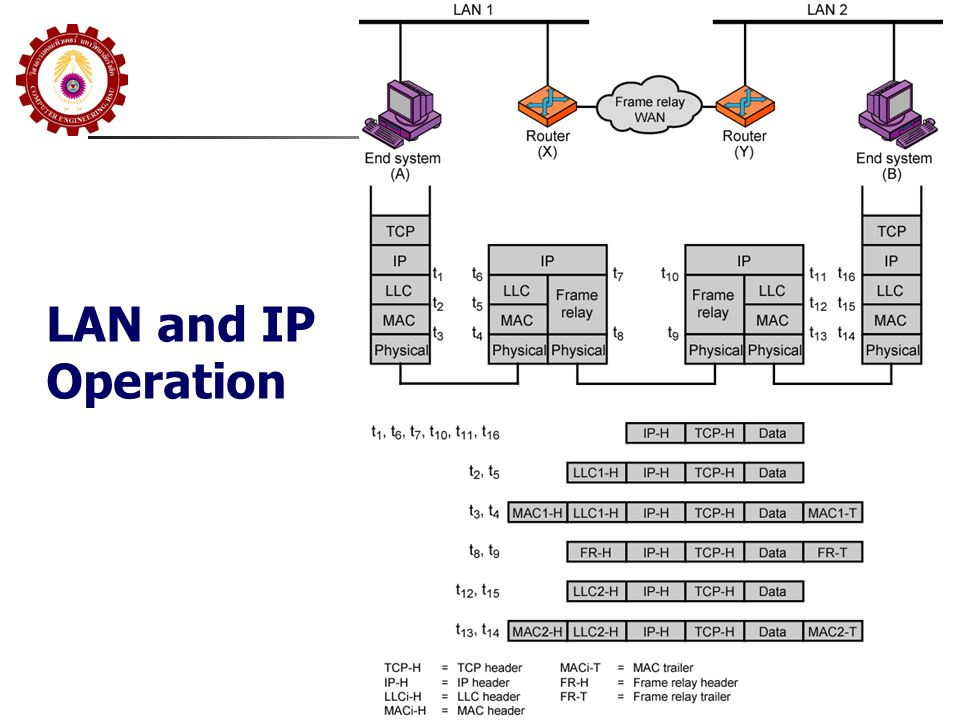 LAN and IP Operation