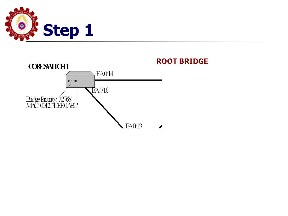 Step 1 ROOT BRIDGE
