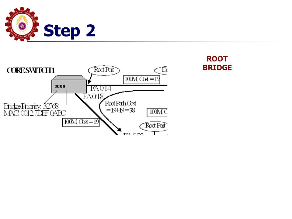 Step 2 ROOT BRIDGE