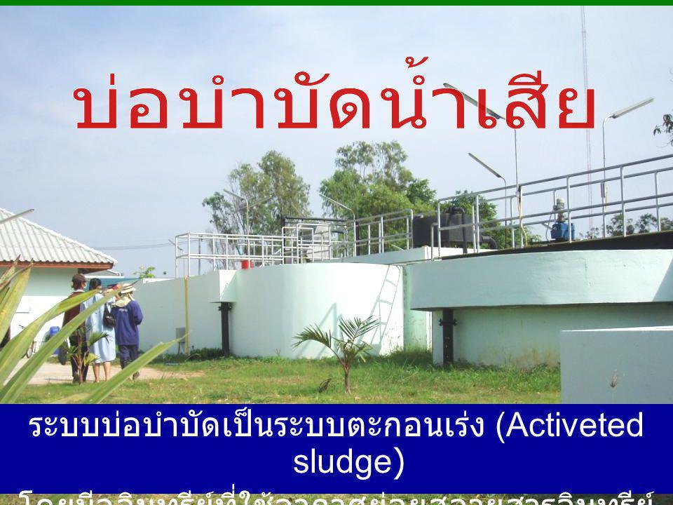 ระบบบ่อบำบัดเป็นระบบตะกอนเร่ง (Activeted sludge)