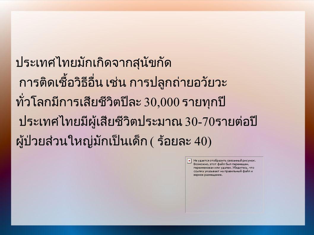 ประเทศไทยมักเกิดจากสุนัขกัด