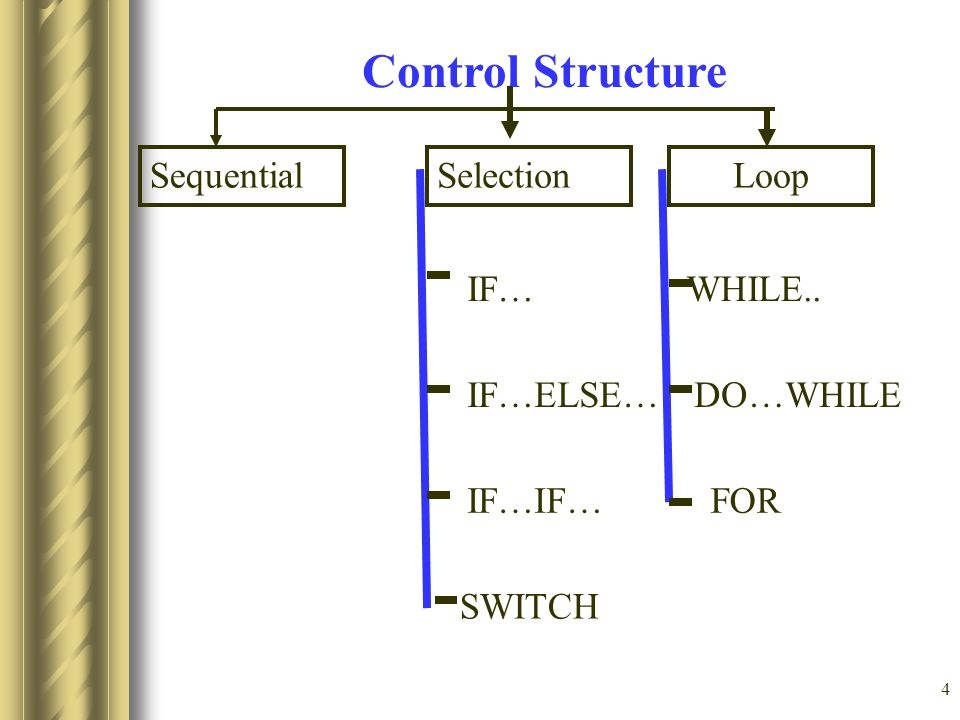 Control Structure Sequential Selection Loop IF… IF…ELSE… IF…IF… SWITCH