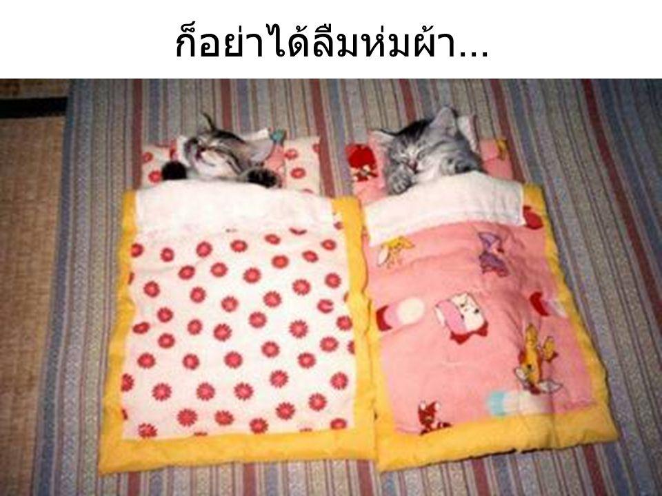 ก็อย่าได้ลืมห่มผ้า...