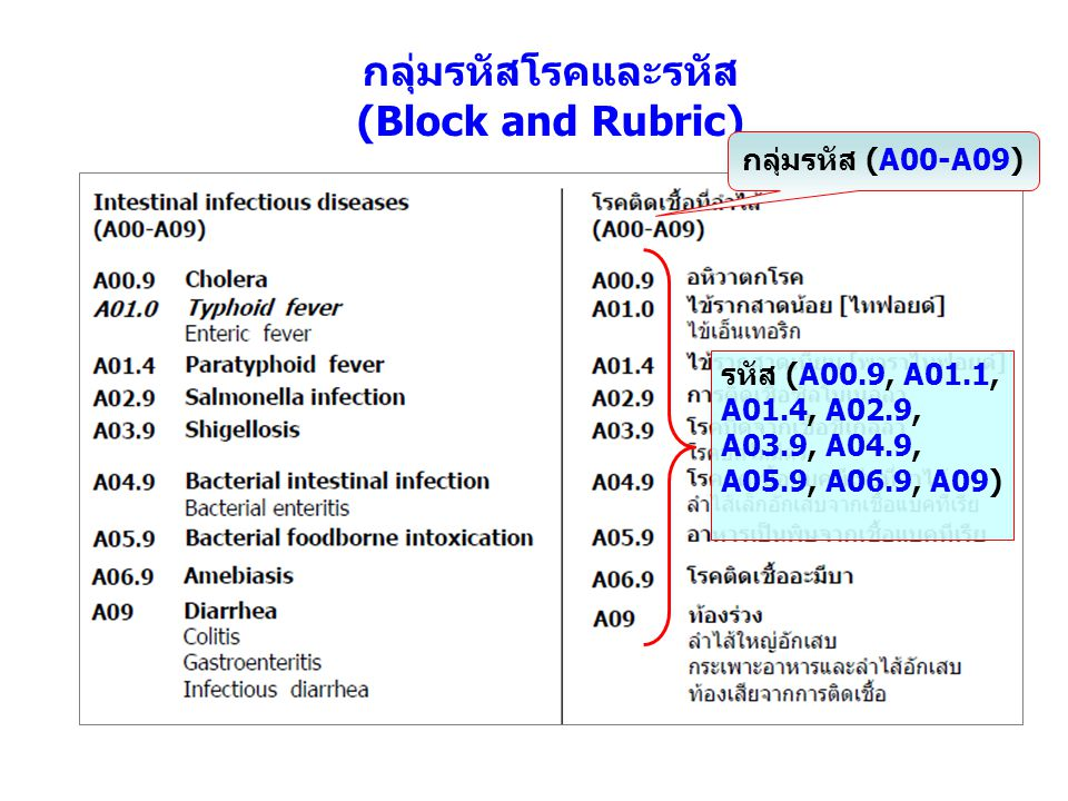 กลุ่มรหัสโรคและรหัส (Block and Rubric)
