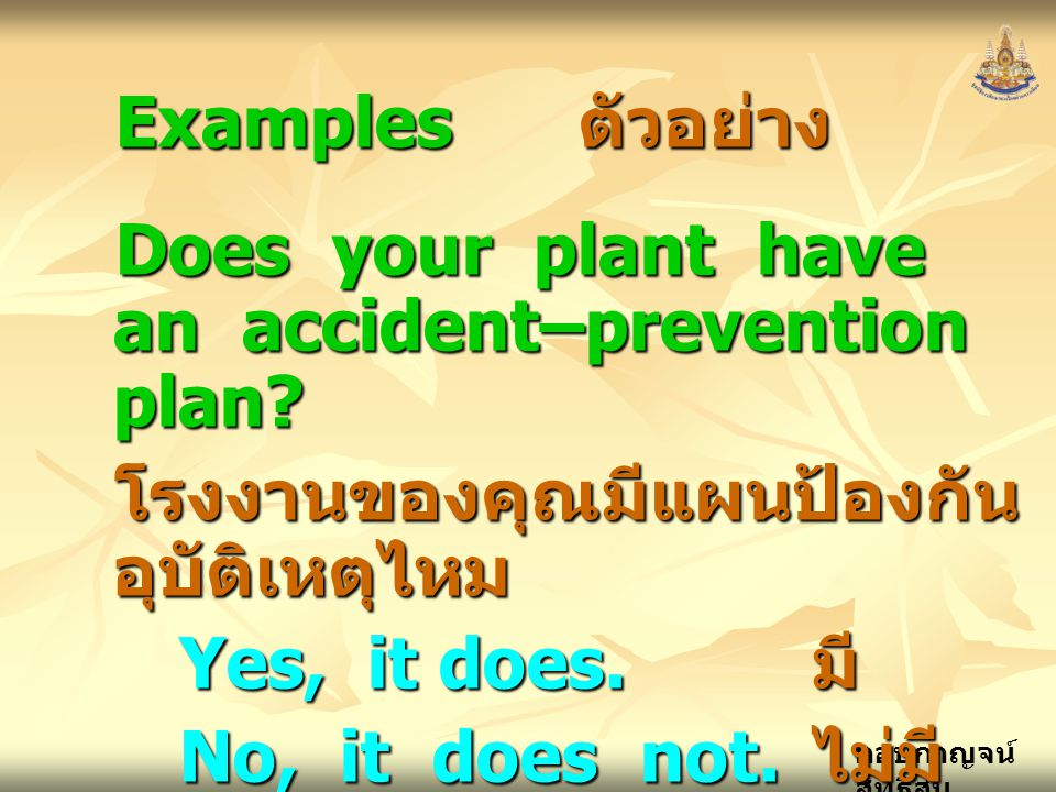 Examples ตัวอย่าง Does your plant have an accident–prevention plan โรงงานของคุณมีแผนป้องกันอุบัติเหตุไหม.