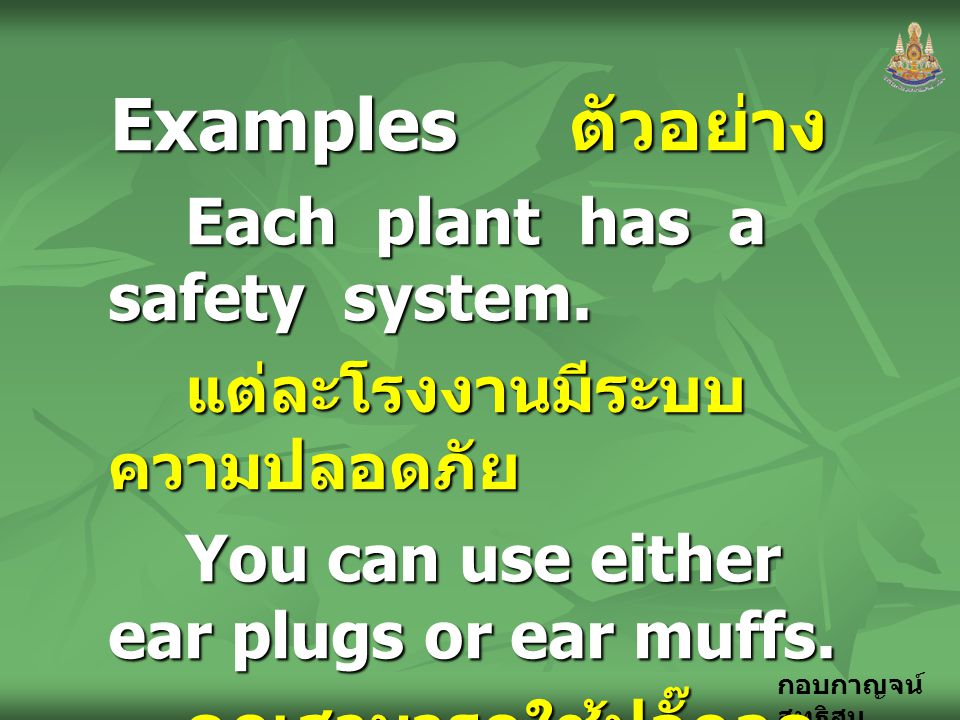 Examples ตัวอย่าง Each plant has a safety system.