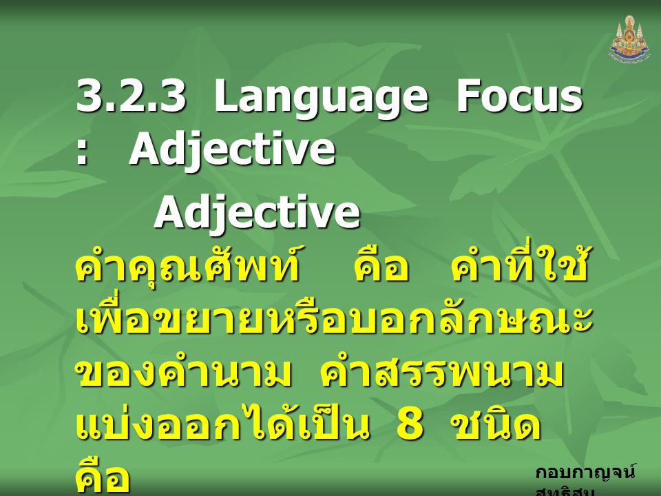 3.2.3 Language Focus : Adjective