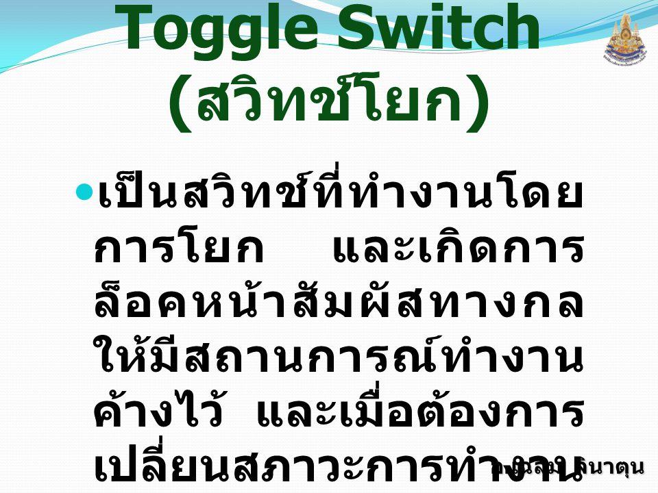 Toggle Switch (สวิทช์โยก)