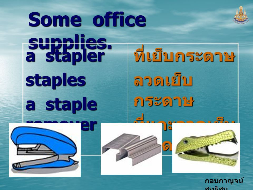 Some office supplies. a stapler staples a staple remover ที่เย็บกระดาษ